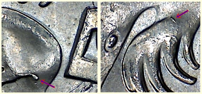 [Image: 5c_2000_C4_Rev_FLCl2C_TRCl_Cuds_Duo.jpg]