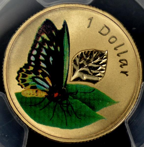 [Image: 2011_butterfly.jpg]